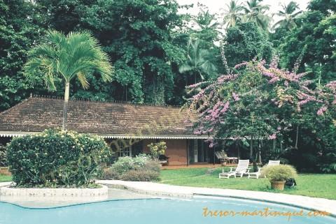 habitation lagrange le jardin tropical. Black Bedroom Furniture Sets. Home Design Ideas